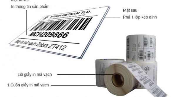 Các loại giấy in hóa đơn thông dụng nhất hiện nay