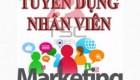Tuyển Nhân viên Marketing chính sách giá