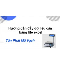 Hướng dẫn đẩy dữ liệu cân bằng file excel